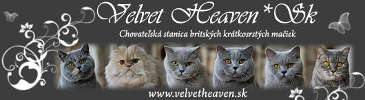 Velvet Heaven*Sk